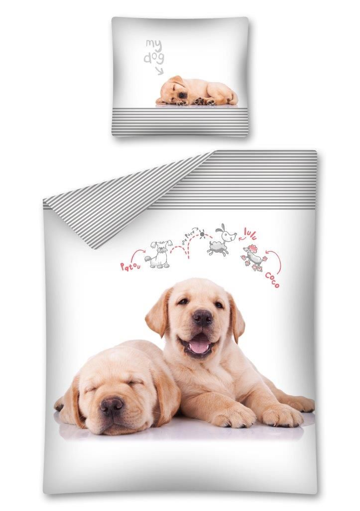 Pościel dla  dzieci 140x200 The dog / Pies 2275 A  Sweet animals Labrador retriever